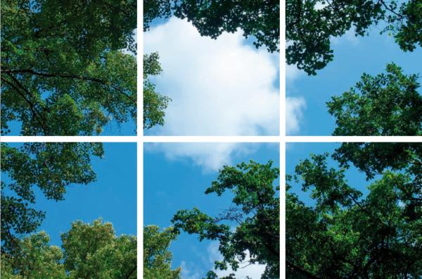 FOTOPRINT afbeelding wolk-bos verdeeld over 6 panelen 595 x 595 mm-0