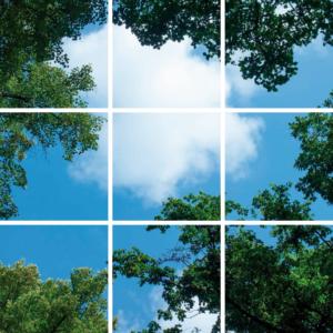FOTOPRINT afbeelding wolk bos verdeeld over 9 panelen 595 x 595 mm-0