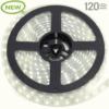 IP22-24V 5 METER 5730/120 15MM-0
