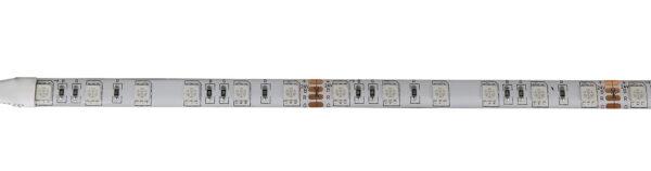 IP65-24V 5 METER 5050/60 10MM RGB-4458