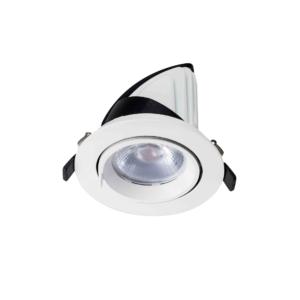 LED DOWNLIGHT KANTELBAAR 24W -4652