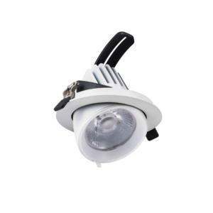 LED DOWNLIGHT KANTELBAAR 24W -4650
