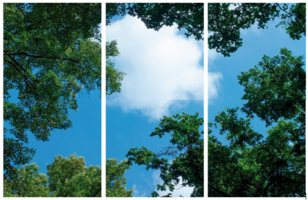 FOTOPRINT afbeelding wolk-bos verdeeld over 3 panelen 1195 x 595 mm-4098
