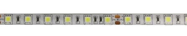 IP65-24V 5 METER 5050/60 10MM-4731