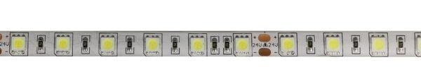 IP65-24V 5 METER 5050/60 10MM-4734