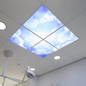 FOTOPRINT afbeelding wolk verdeeld over 4 panelen 595 x 595 mm-2055