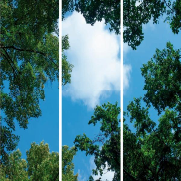 FOTOPRINT afbeelding wolk-bos verdeeld over 3 panelen 1195 x 595 mm-0
